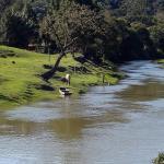 O rio dos cedros, Alto Cedros, Rio dos Cedros, SC. - Rio dos Cedros (Carlos C. Nasato)
